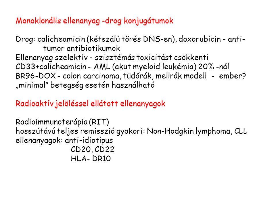 Monoklonális ellenanyag -drog konjugátumok