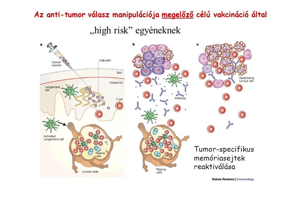Az anti-tumor válasz manipulációja megelőző célú vakcináció által