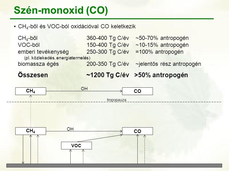 Szén-monoxid (CO) Összesen ~1200 Tg C/év >50% antropogén
