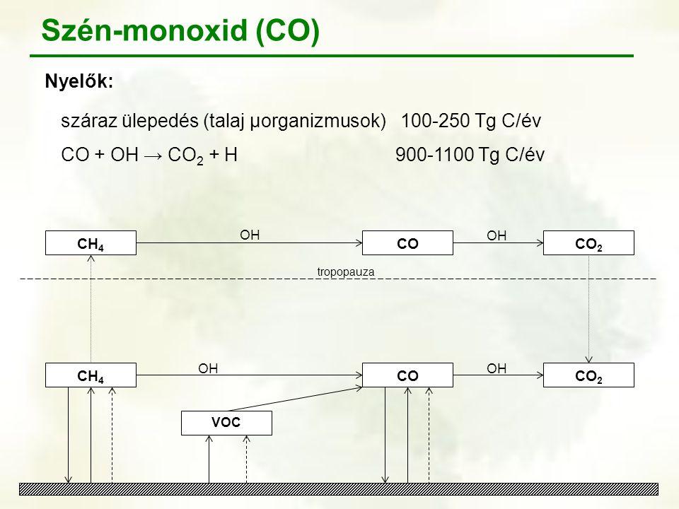 Szén-monoxid (CO) Nyelők: