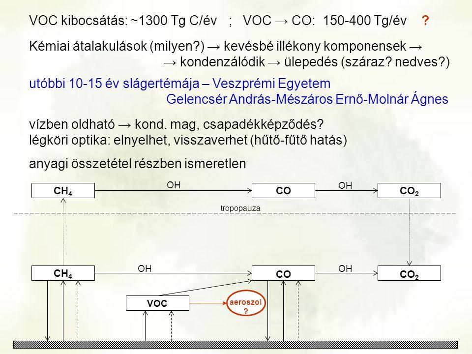 VOC kibocsátás: ~1300 Tg C/év ; VOC → CO: 150-400 Tg/év