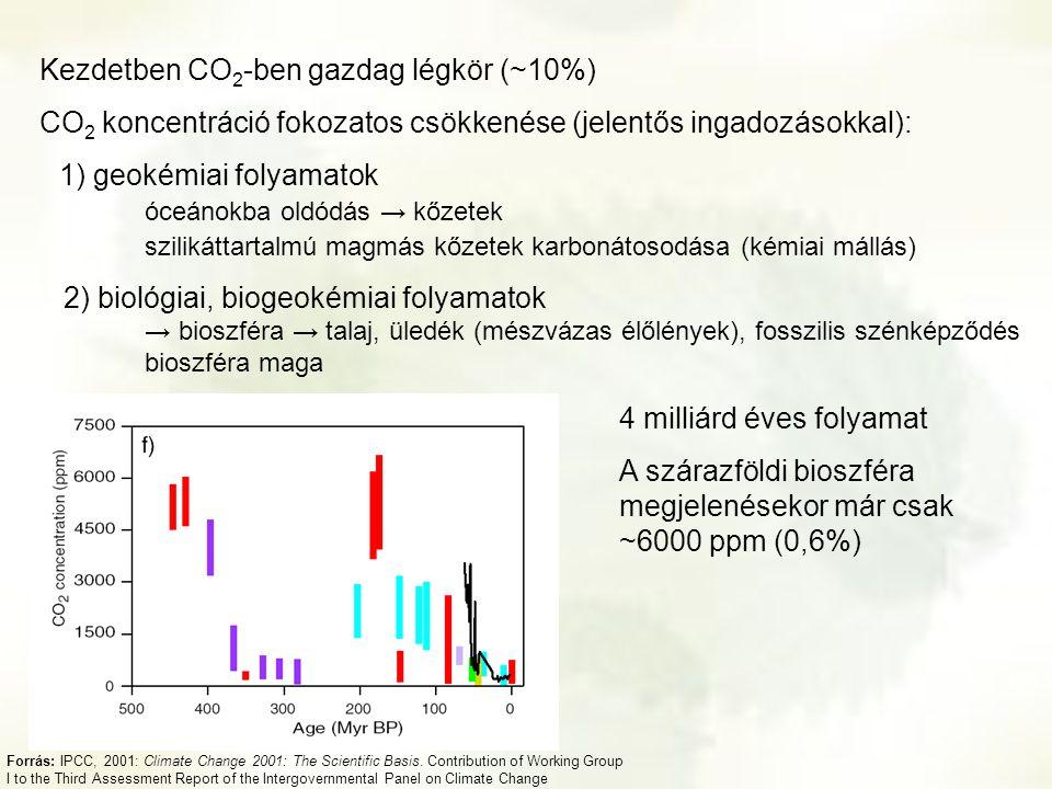Kezdetben CO2-ben gazdag légkör (~10%)