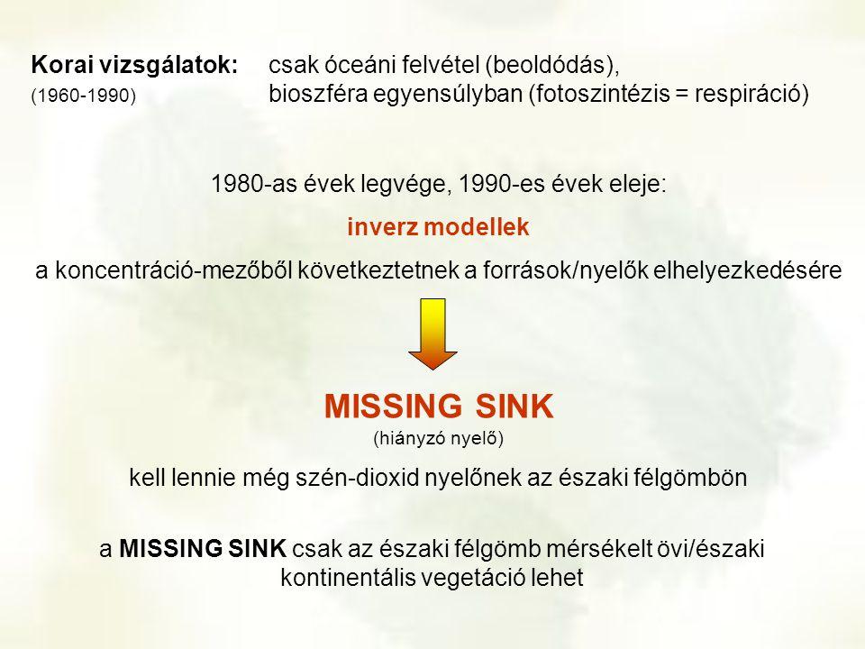 MISSING SINK (hiányzó nyelő)