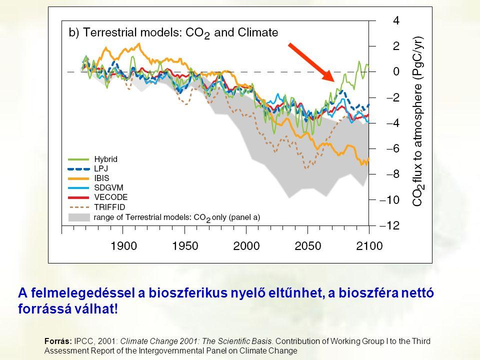 A felmelegedéssel a bioszferikus nyelő eltűnhet, a bioszféra nettó forrássá válhat!