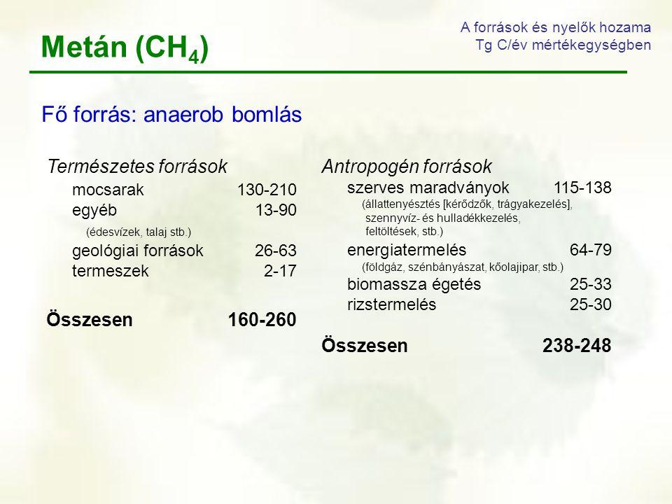 Metán (CH4) Fő forrás: anaerob bomlás Természetes források