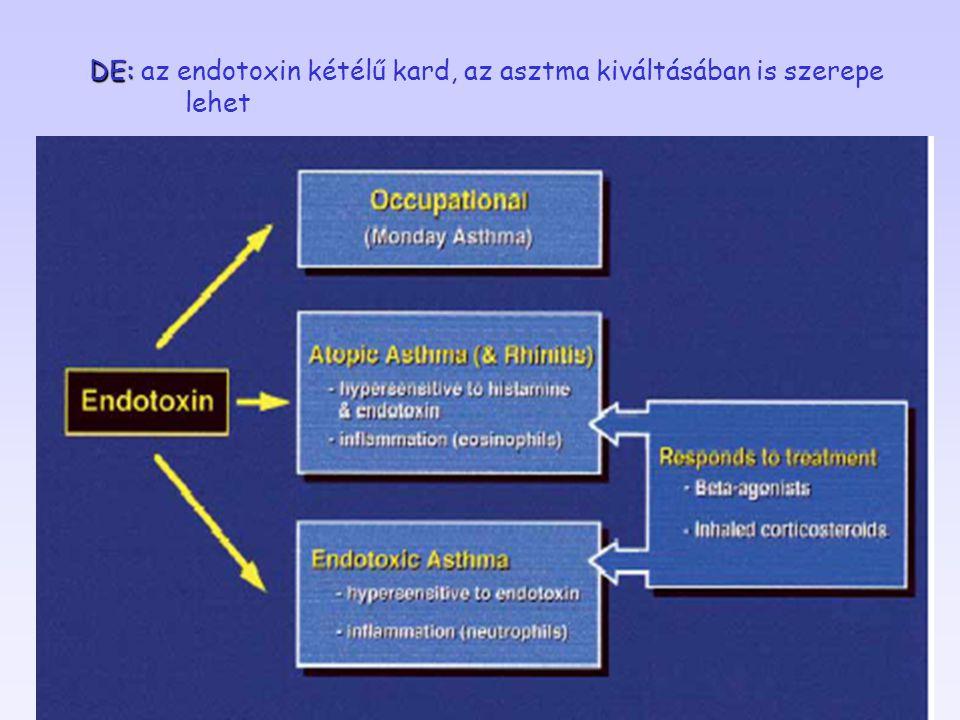 DE: az endotoxin kétélű kard, az asztma kiváltásában is szerepe lehet