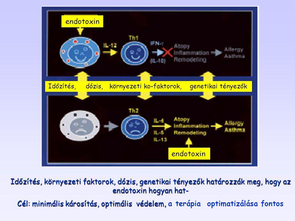 endotoxin Időzítés, dózis, környezeti ko-faktorok, genetikai tényezők. endotoxin.