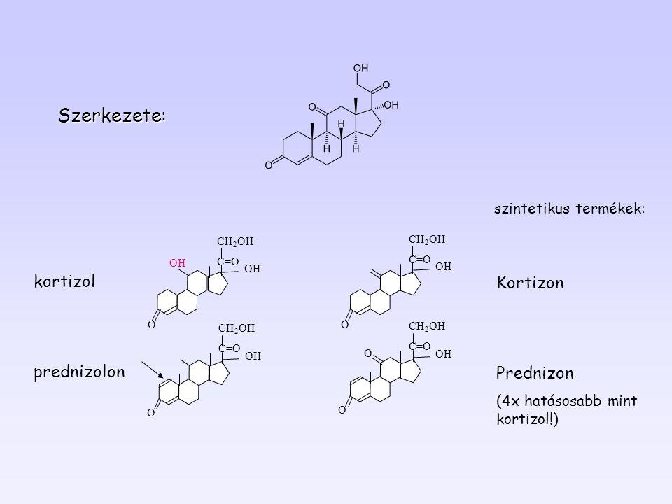 Szerkezete: kortizol Kortizon prednizolon Prednizon