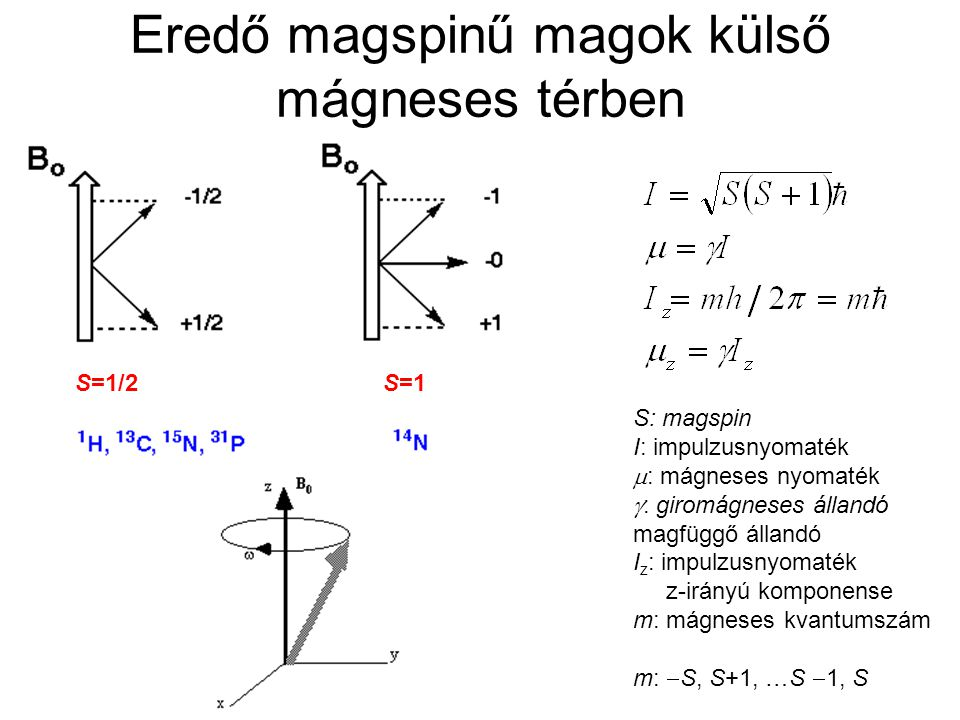 Eredő magspinű magok külső mágneses térben
