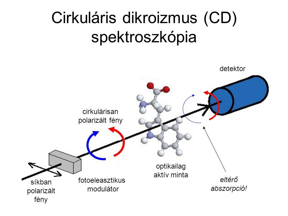 Cirkuláris dikroizmus (CD) spektroszkópia