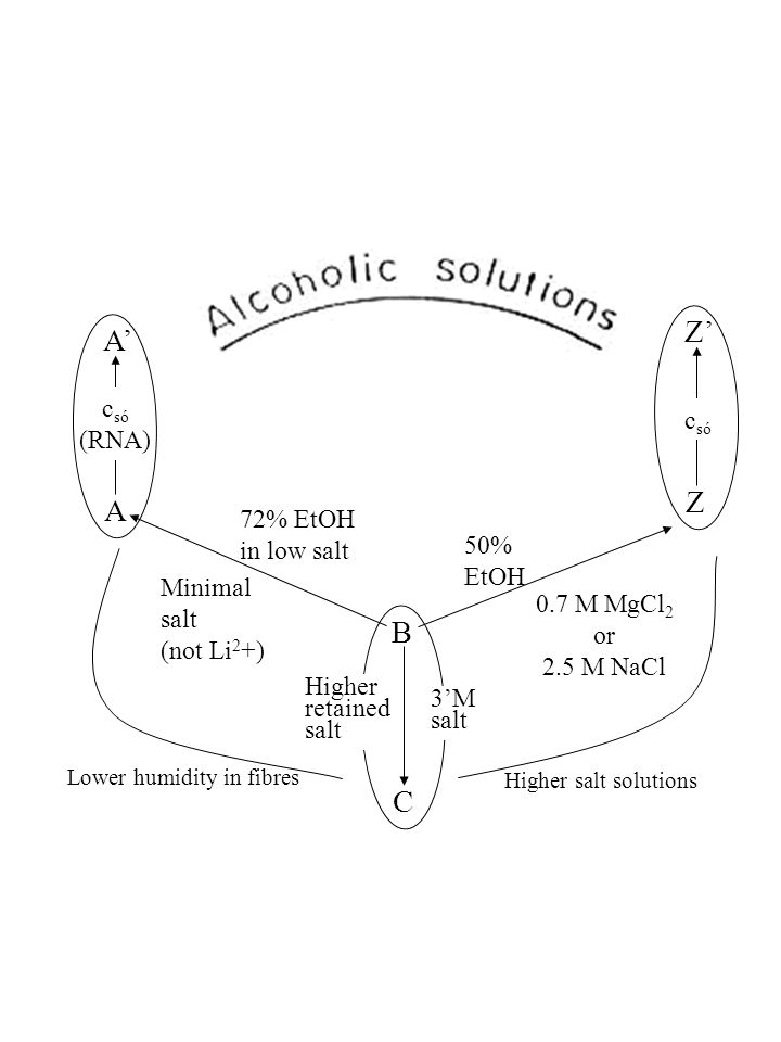 Z' A' Z A B C csó csó (RNA) 72% EtOH in low salt 50% EtOH