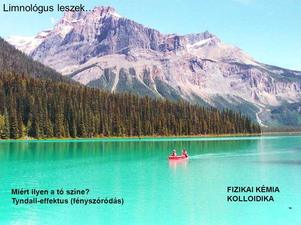 Limnológus leszek… FIZIKAI KÉMIA KOLLOIDIKA Miért ilyen a tó színe