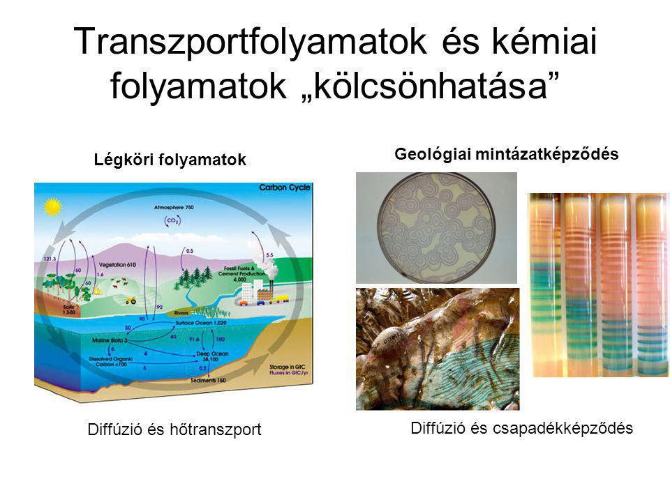 """Transzportfolyamatok és kémiai folyamatok """"kölcsönhatása"""