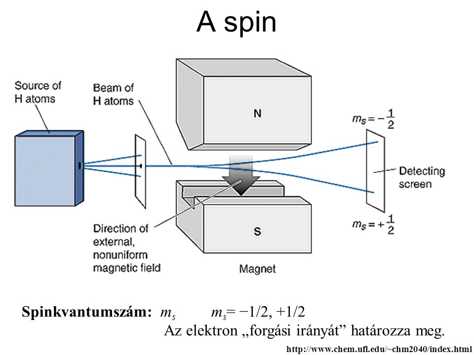 A spin Spinkvantumszám: ms ms= −1/2, +1/2