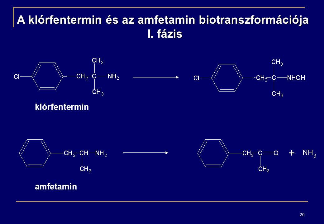 A klórfentermin és az amfetamin biotranszformációja