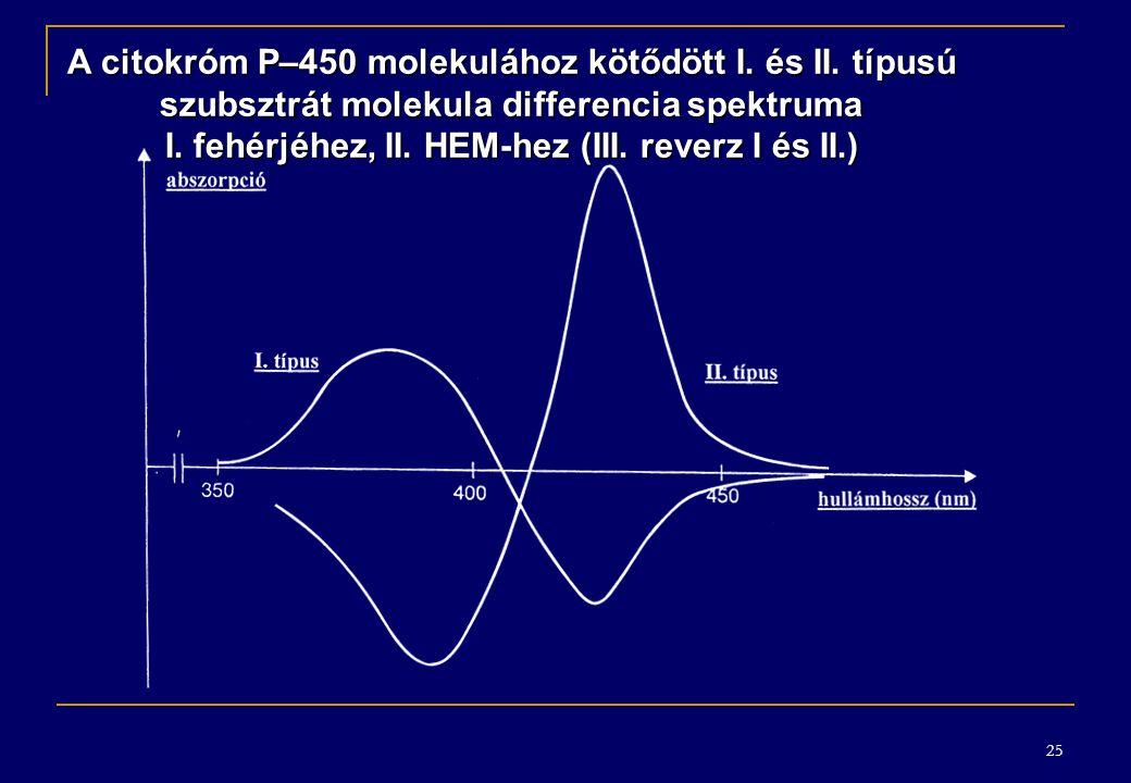 A citokróm P–450 molekulához kötődött I. és II. típusú
