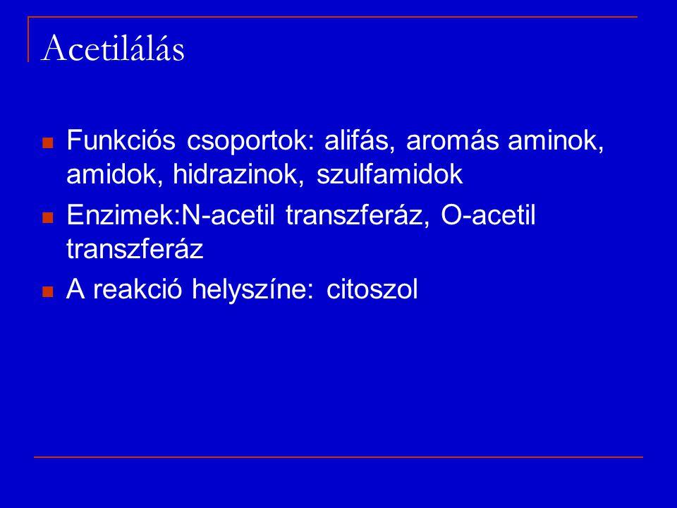 Acetilálás Funkciós csoportok: alifás, aromás aminok, amidok, hidrazinok, szulfamidok. Enzimek:N-acetil transzferáz, O-acetil transzferáz.