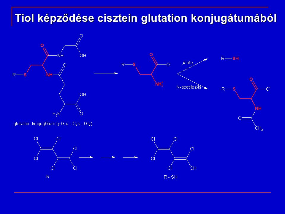 Tiol képződése cisztein glutation konjugátumából