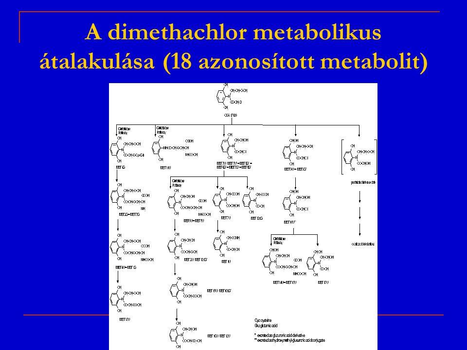 A dimethachlor metabolikus átalakulása (18 azonosított metabolit)
