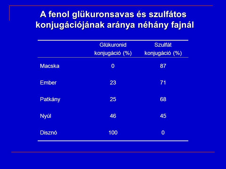A fenol glükuronsavas és szulfátos