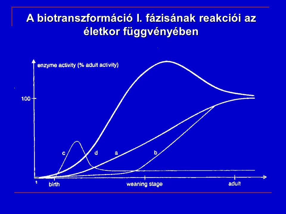 A biotranszformáció I. fázisának reakciói az