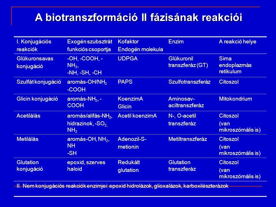 A biotranszformáció II fázisának reakciói