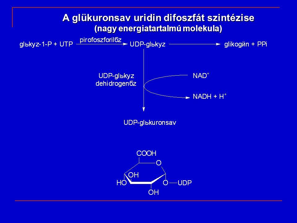 (nagy energiatartalmú molekula)