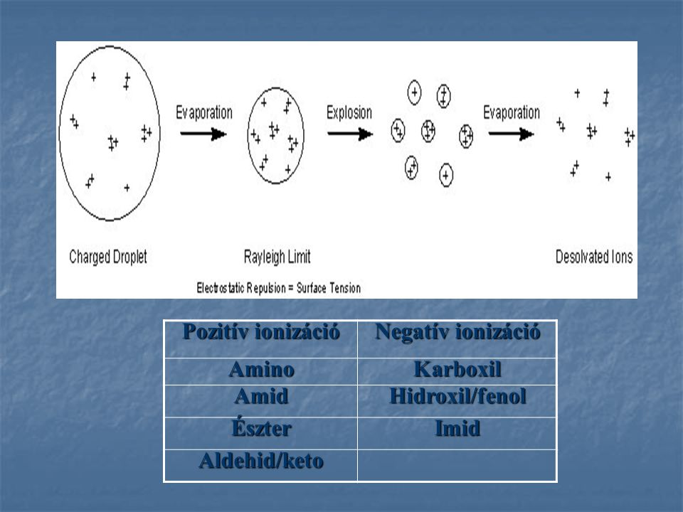 Pozitív ionizáció Negatív ionizáció Amino Karboxil Amid Hidroxil/fenol