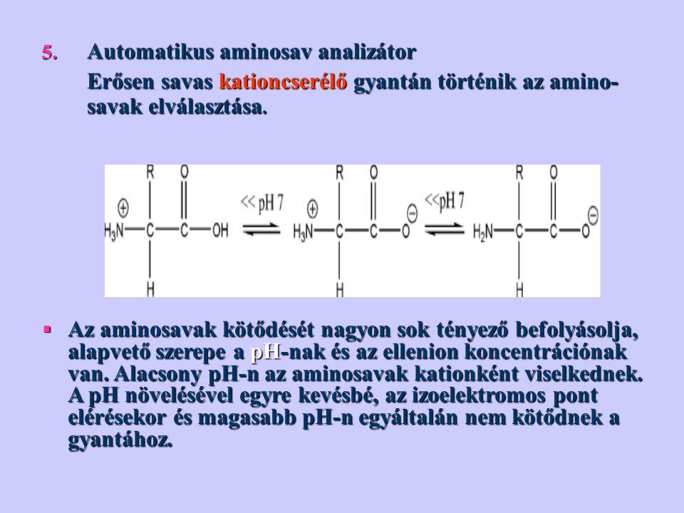 Automatikus aminosav analizátor