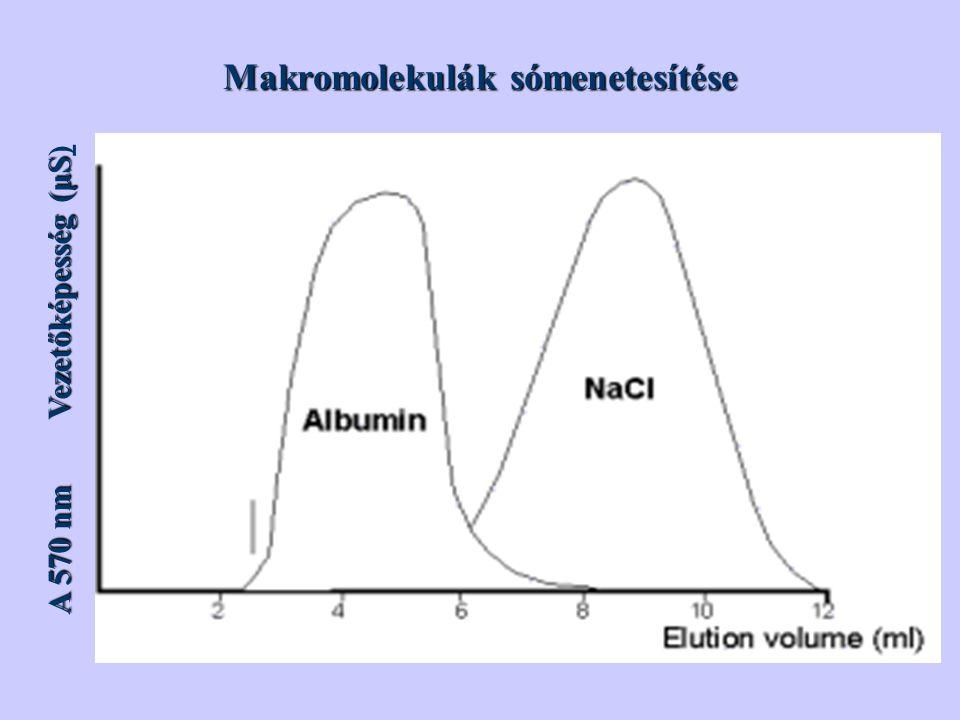 Makromolekulák sómenetesítése