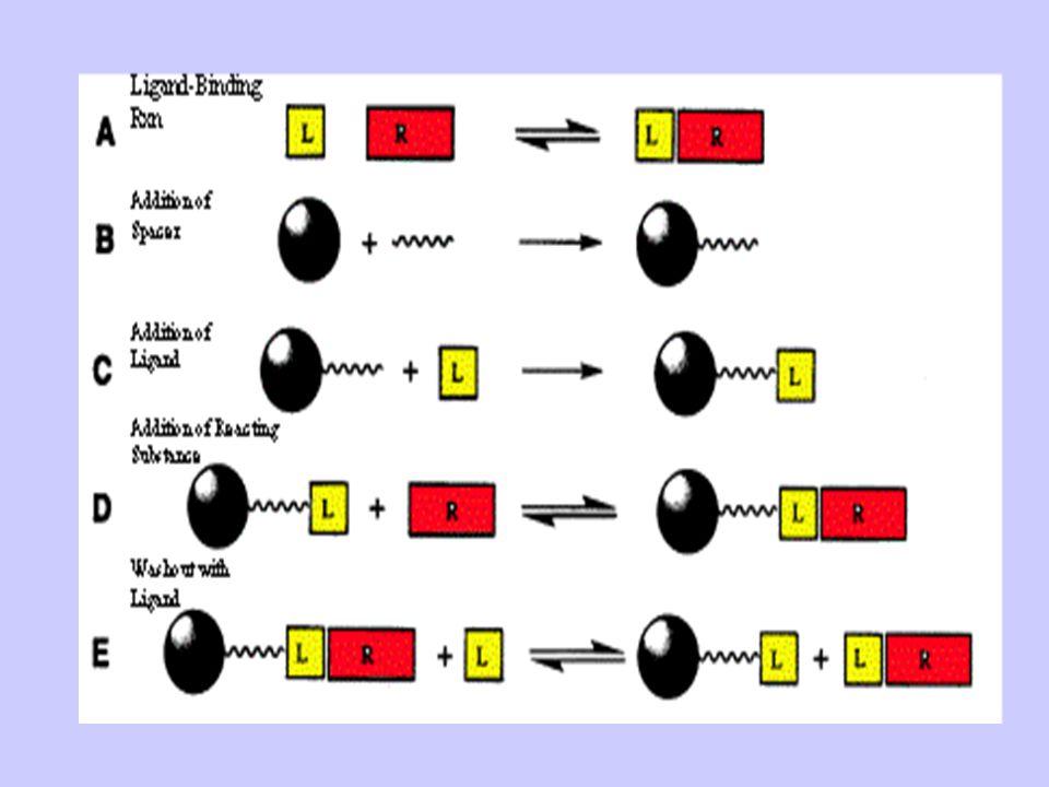 Aktivált agarózhoz (brom-ciánnal aktiválunk, ekkor az agaróz C- OH-ja C= NH-ra cserélődik) hozzáadjuk a primer aminocsoportot tartalmazó kapcsolót (R-NH2) (nem lehet túl hosszú a visszahajlás és hidrofób kölcsönhatások miatt, ami nem specifikus adszorbcióhoz vezet.