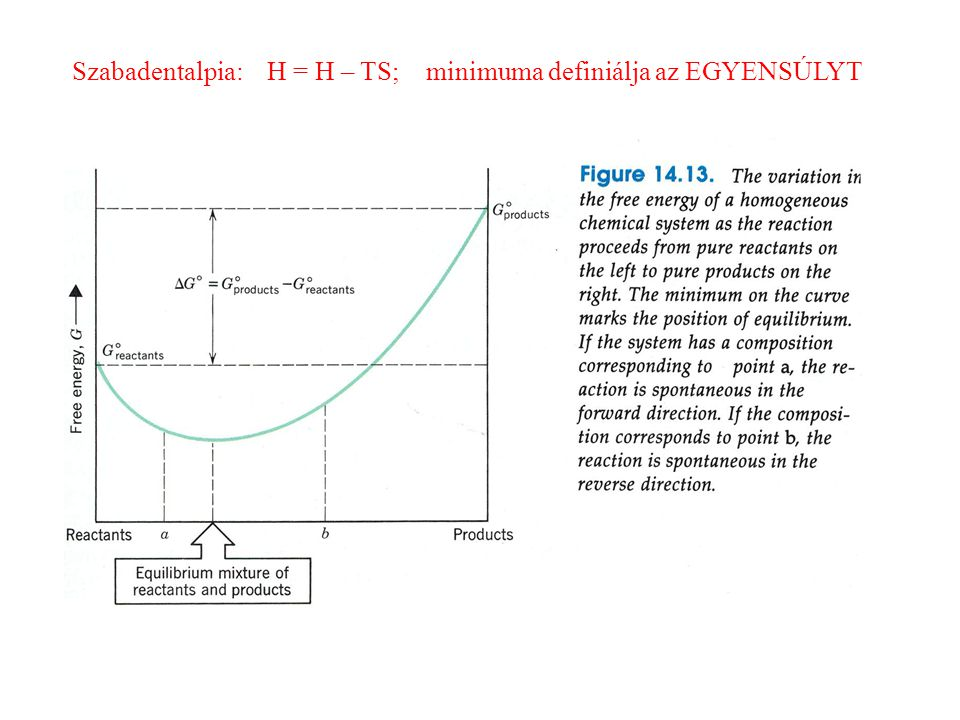 Szabadentalpia: H = H – TS; minimuma definiálja az EGYENSÚLYT