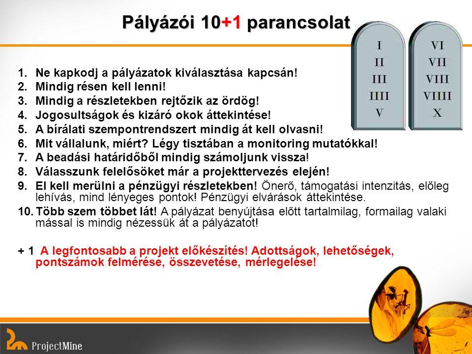 Pályázói 10+1 parancsolat