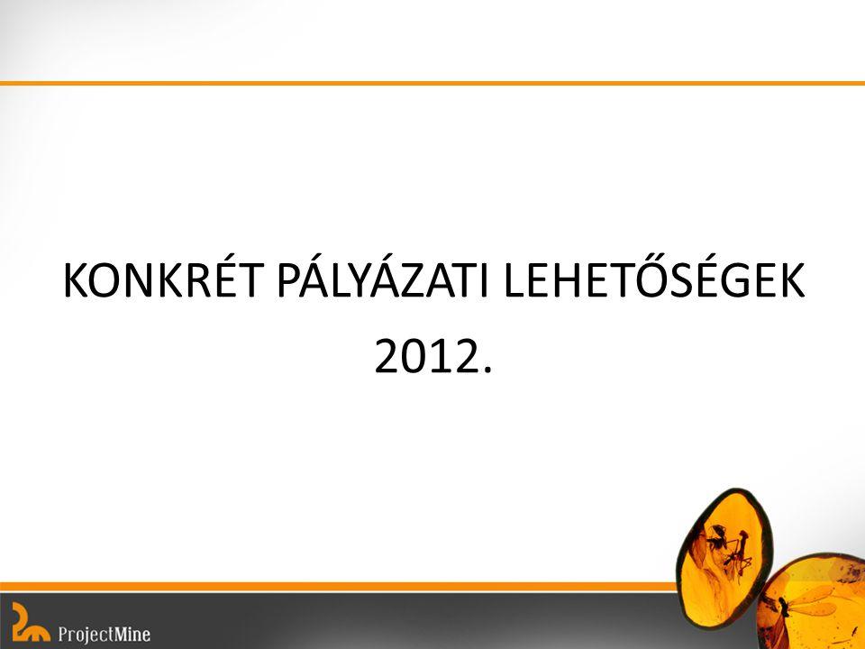 KONKRÉT PÁLYÁZATI LEHETŐSÉGEK 2012.