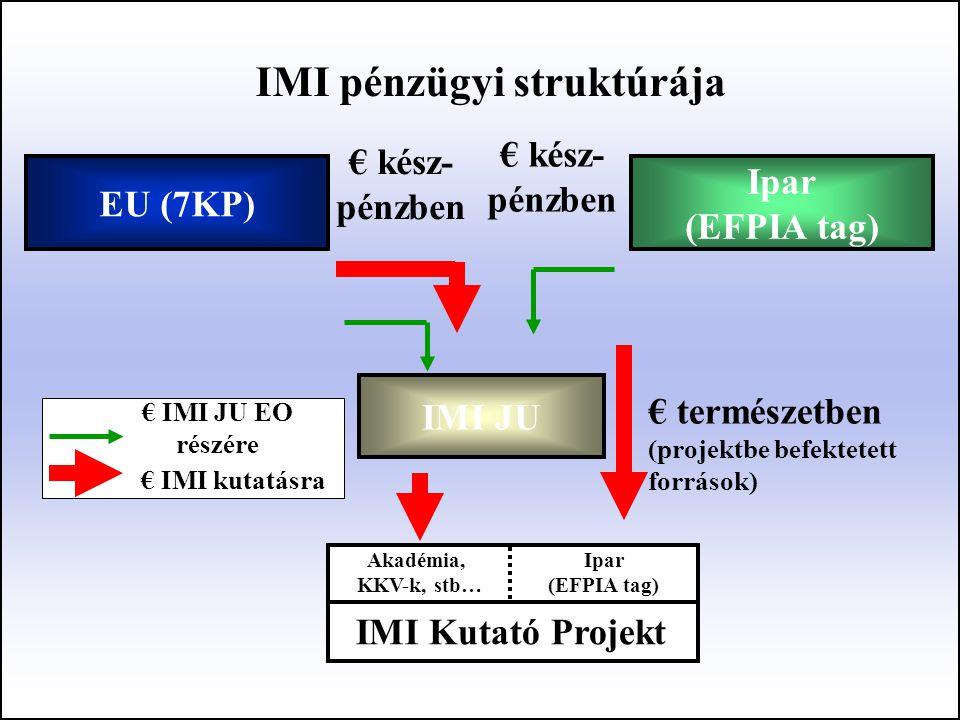 IMI pénzügyi struktúrája