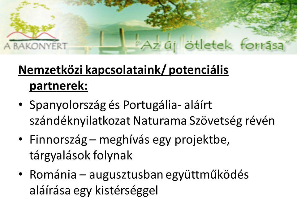 Nemzetközi kapcsolataink/ potenciális partnerek: