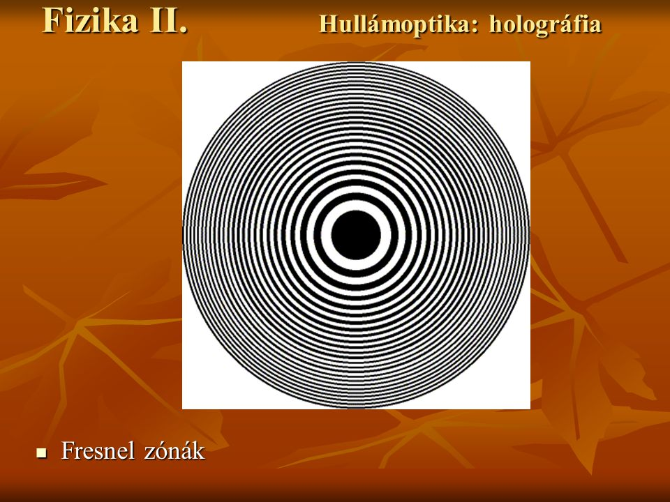 Fizika II. Hullámoptika: holográfia