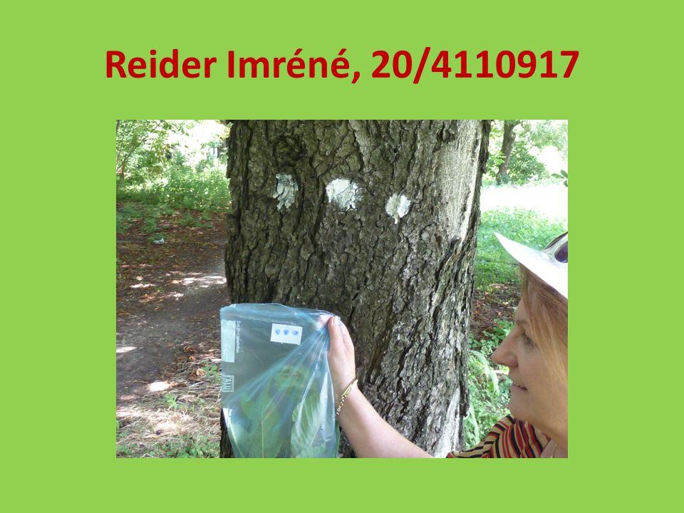 Reider Imréné, 20/4110917