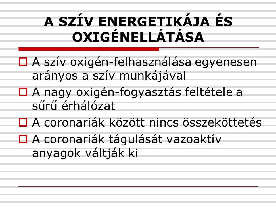 A SZÍV ENERGETIKÁJA ÉS OXIGÉNELLÁTÁSA