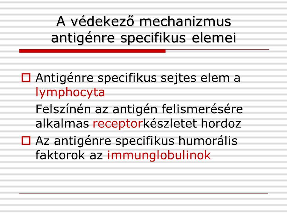 A védekező mechanizmus antigénre specifikus elemei