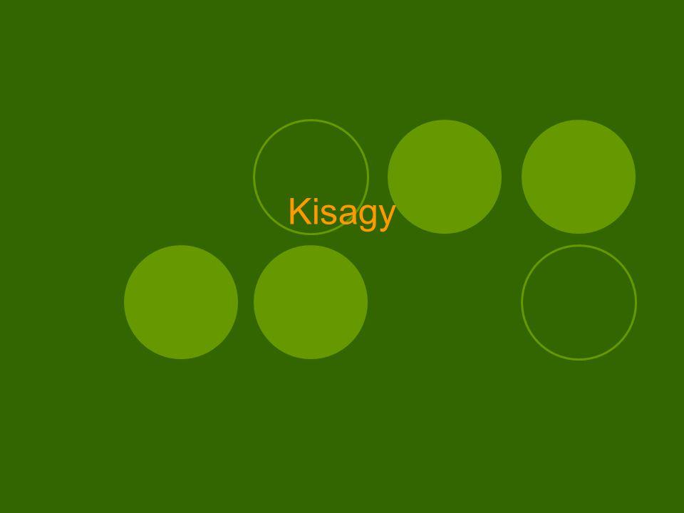 Kisagy