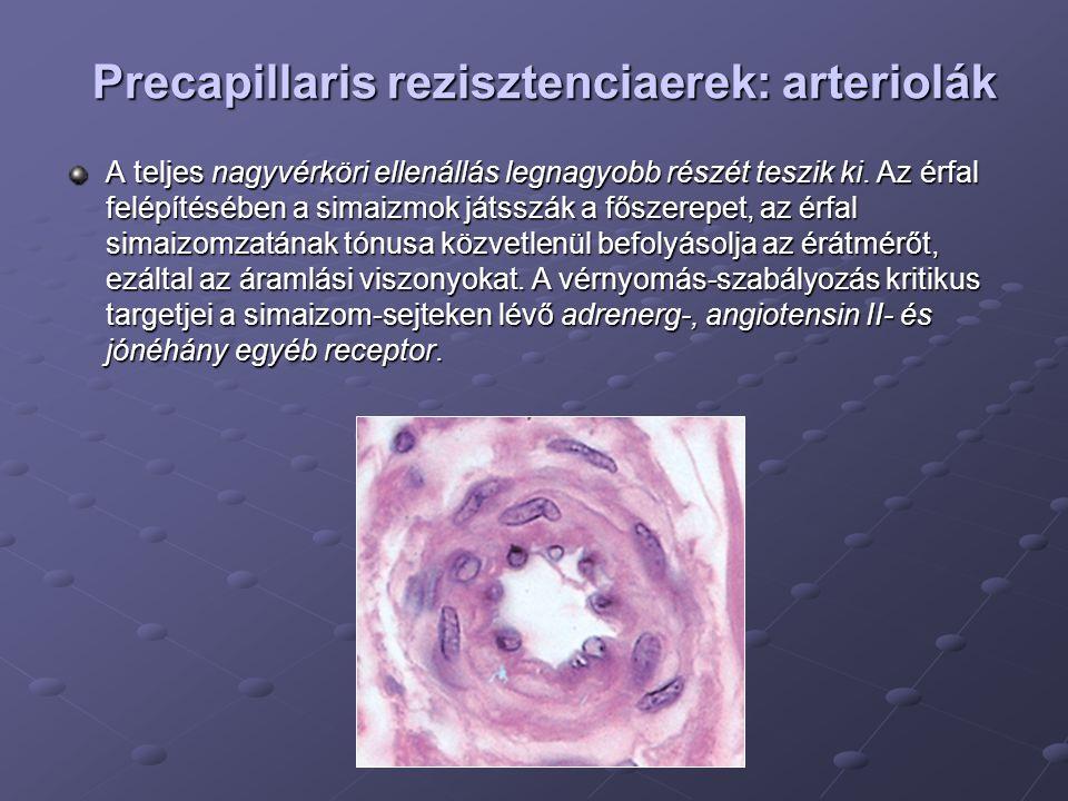 Precapillaris rezisztenciaerek: arteriolák