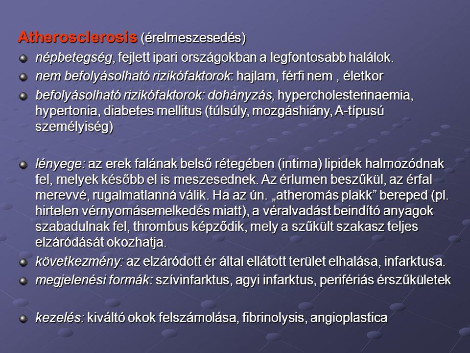 Atherosclerosis (érelmeszesedés)