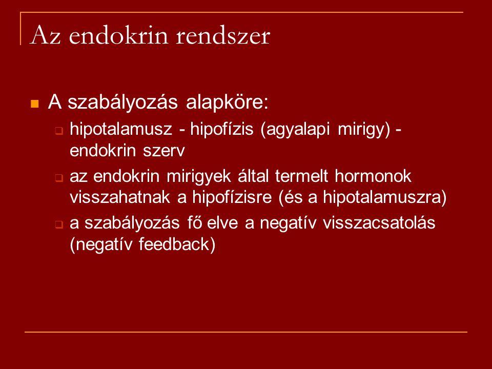 Az endokrin rendszer A szabályozás alapköre: