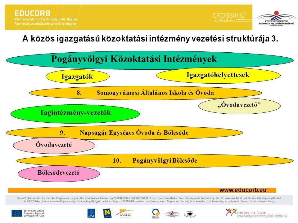 A közös igazgatású közoktatási intézmény vezetési struktúrája 3.