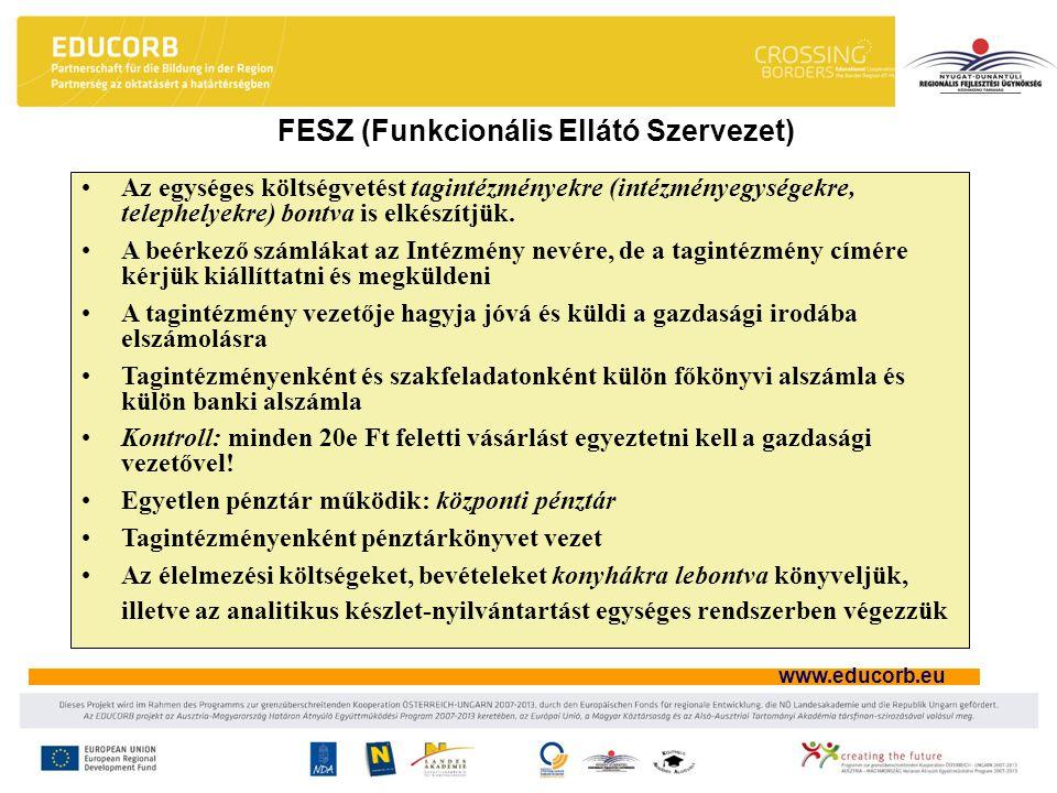 FESZ (Funkcionális Ellátó Szervezet)