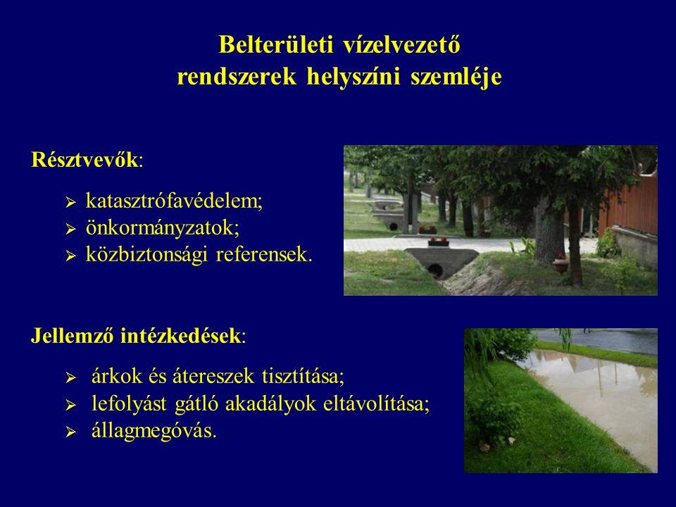 Belterületi vízelvezető rendszerek helyszíni szemléje