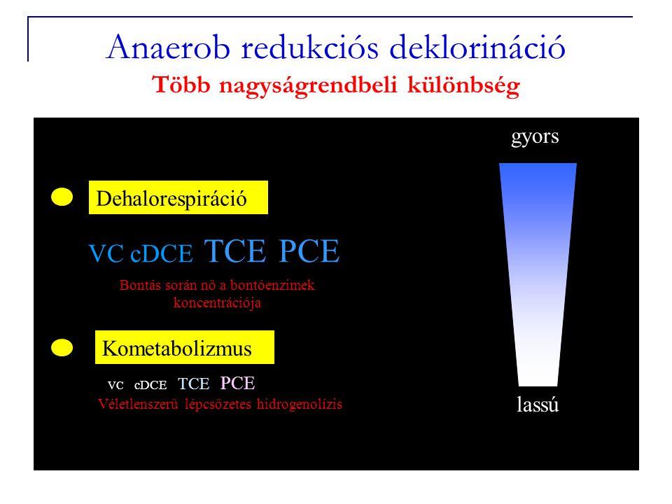 Anaerob redukciós deklorináció Több nagyságrendbeli különbség