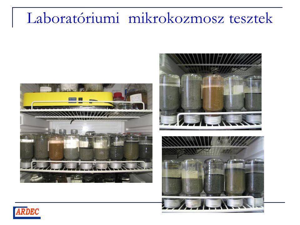 Laboratóriumi mikrokozmosz tesztek