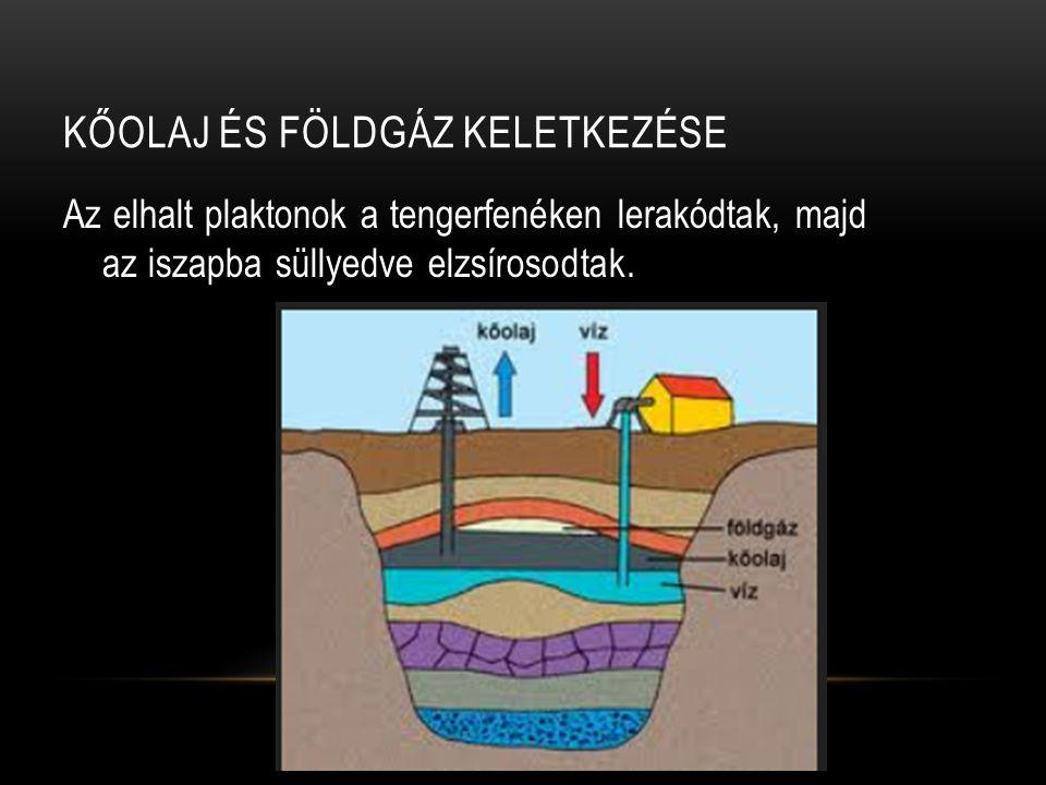 Kőolaj és földgáz keletkezése